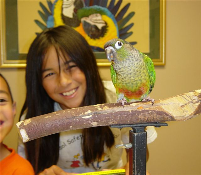 Medical Center For Birds Oakley California - Our Patients