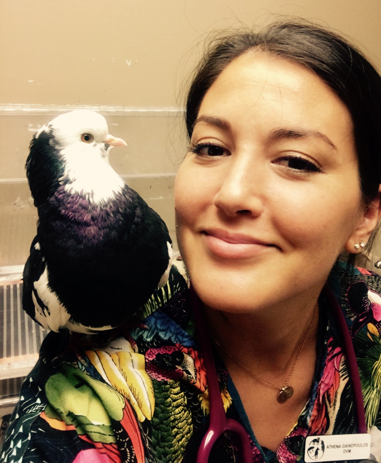 Dr. Athena Gianopoulos, DVM, Medical Center For Birds