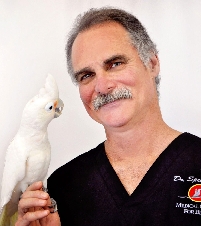 Dr. Speer
