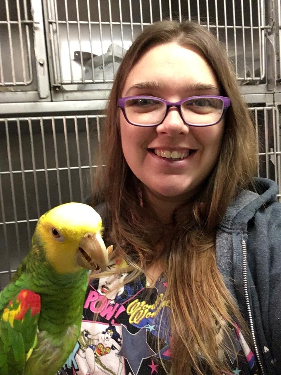 Busy Beaks Academy - Melody Hennigh